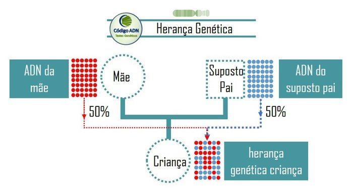 herança genética no teste de paternidade