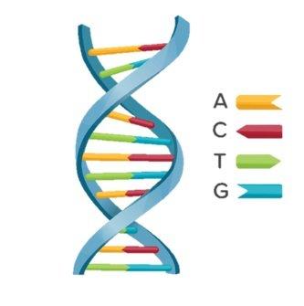 quantidade de marcadores geneticos