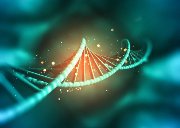 Como evitar contaminação das amostras de ADN.