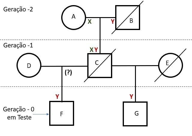 Como desenhar a árvore genealógica