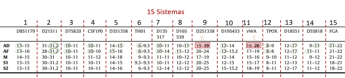comparação locus de adn com 15 marcadores genéticos